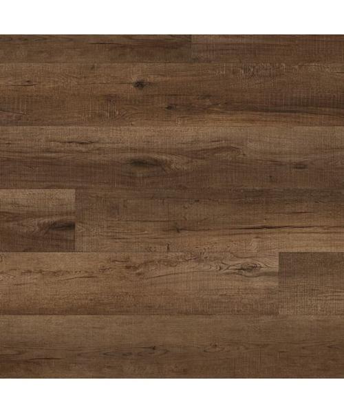 Chandler Oak